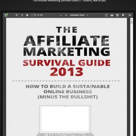 Download The Affiliate Marketing Survival Guide 2013