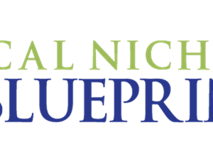 Download Kevin Wilke - Ed Downes - Local Niche Blueprint