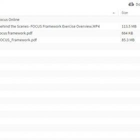 Download Justin Wilcox – The FOCUS Framework