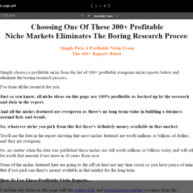 Download NicheHacks Insider – Full RIP