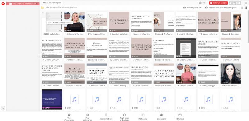 Download Julie Solomon – The influencer Academy