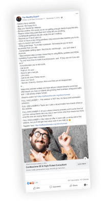 Download Traffic and Funnels – Turbo Templates